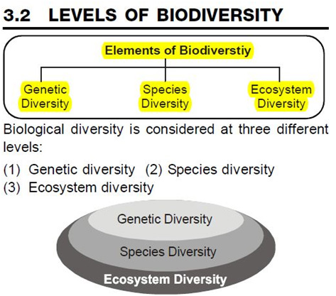 Levels of Blodiversity